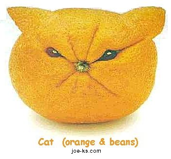 http://cinesperienza.altervista.org/varie/FruitArt_Cat.jpg