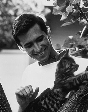 http://cinesperienza.altervista.org/varie/cats/AnthonyPerkins.jpg