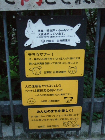 http://cinesperienza.altervista.org/varie/cats/japan06/neko10.jpg