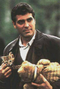 http://cinesperienza.altervista.org/varie/george_clooney_and_kitten.jpg